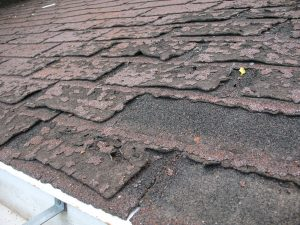 Failure_of_asphalt_shingles_allowing_roof_leakage
